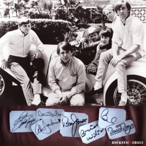 The Beach Boys autographs vinyl decal guitar
