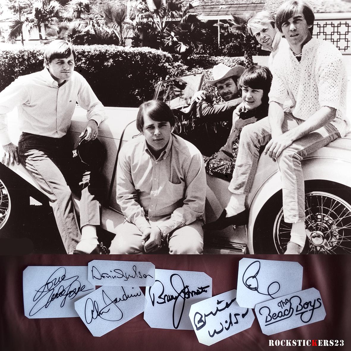 The Beach Boys autographs vinyl decal guitar