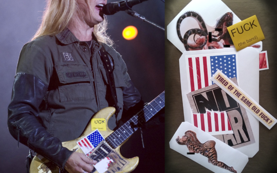 jerry cantrell guitar Alice in Chains stickers decal